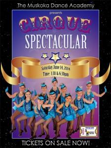 Cirque Spectacular Web Poster