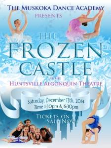 The Frozen Castle - Poster 4 vs4 - smweb(1)
